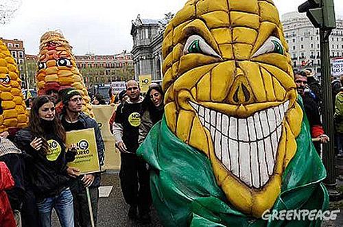 Greenpeace Transgenico.