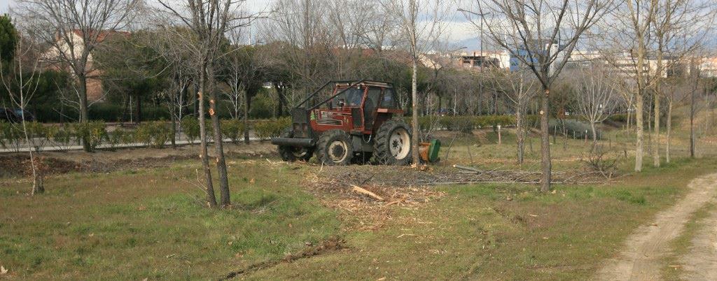 Tres cantos trabaja para recuperar el parque sur for Vivero alcobendas