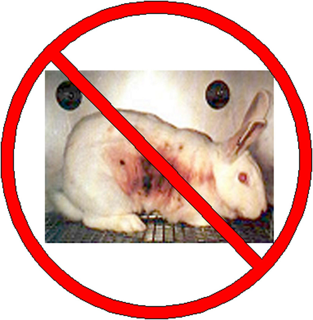 Testing cosmetics on animals should be banned essay