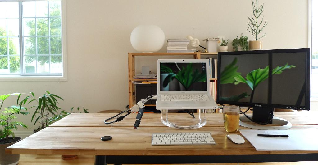 Una planta en tu mesa de trabajo te hace ser m s productivo for Decoracion de oficinas con plantas