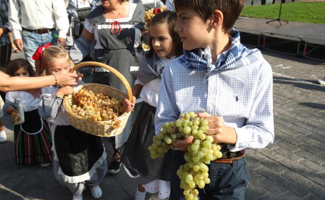 Fiesta de la vendimia en alcobendas - Fiestas en alcobendas ...