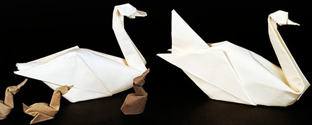 Origami-exposición