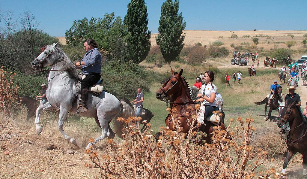 Este fin de semana disfruta en las fiestas de valdeolmos for Eventos en madrid este fin de semana
