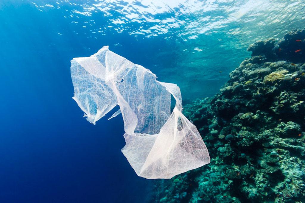 Resultado de imagen de mar con plastico